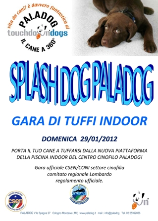 Splash Dog al Paladog!