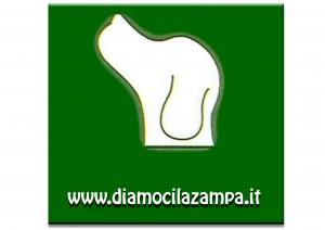 Radiobau dona il suo 5×1000 a Diamoci la Zampa