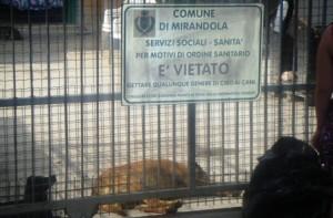 SOS BAU – Mirandola!!!