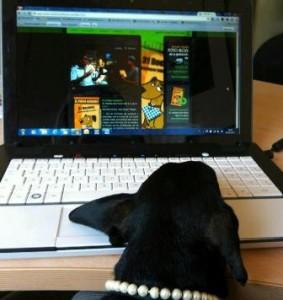 22 Giugno 2012 Porta il tuo cane al lavoro con te!