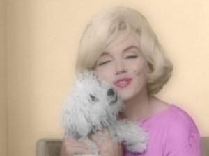 Maf, il cane di Marilyn Monroe