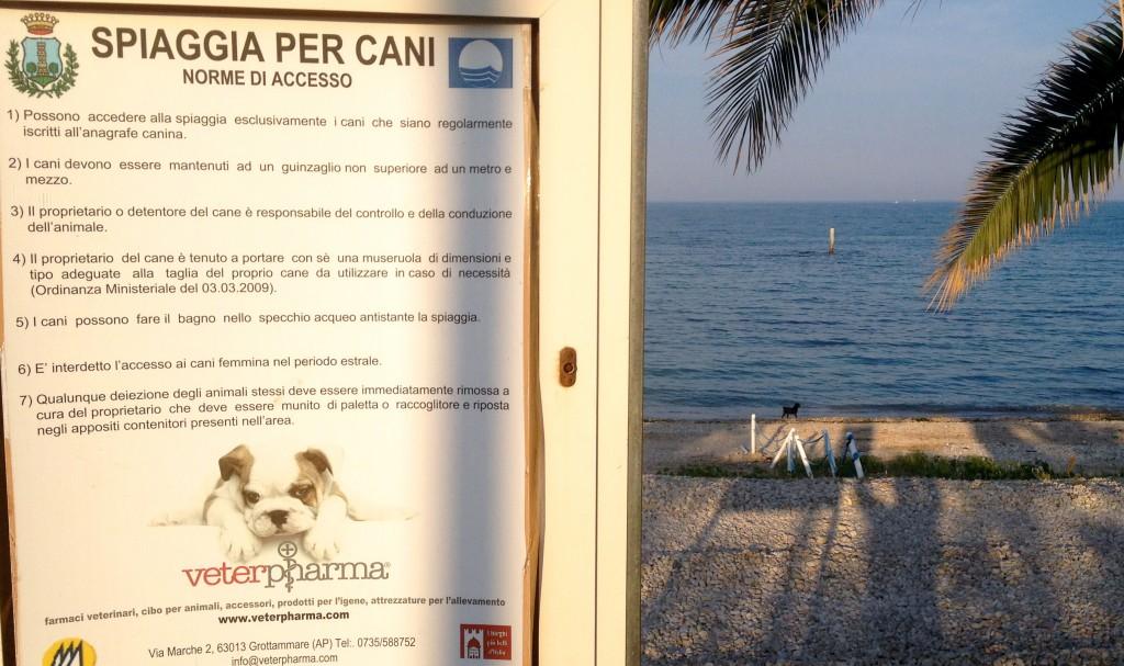 A Grottammare SPIAGGIA DA CANI e non per Cani!!!!