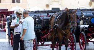 Roma; applicazione totale delle normative per le Botticelle. Andare a piedi, no???