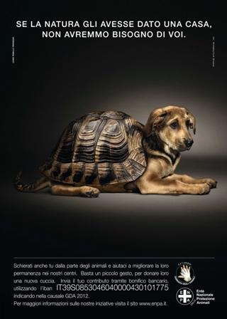 6-7 Ottobre 10° Giornata degli Animali