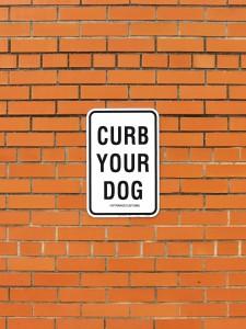 New York Dogs…paese che vai, cane che trovi!