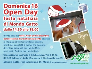 Open Day Natalizio a mondo Gatto!!!