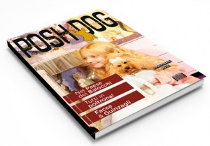 Posh Dog; luxury, balocchi e charity