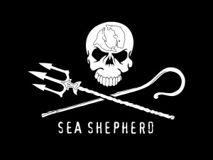 DJ, rockers e pirati  per Sea Shepherd Conservation Society