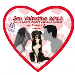 San Valentino, una rosa rossa simbolo d'amore a quattro zampe