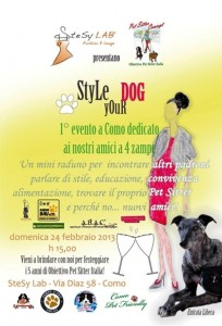 Style your Dog a Como