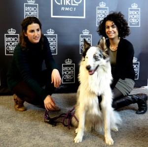 Australian Shepherd Rescue Italia; ospiti a Radiobau