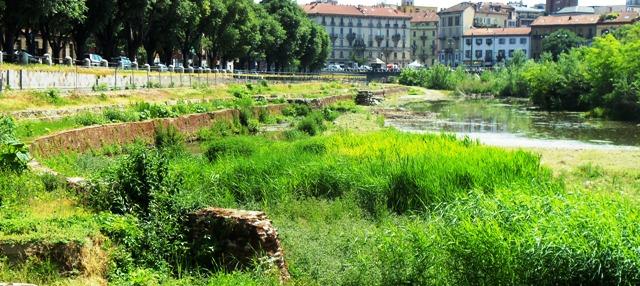 Distrutta la piccola ma preziosa oasi naturalistica della Darsena di Milano