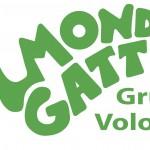 Missione; Mondo Gatto!!!