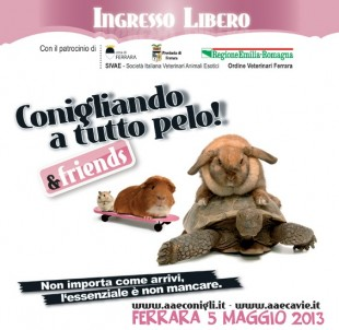 5 Maggio 2013 a Ferrara…CONIGLIANDO!!!
