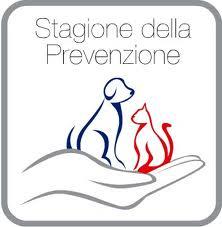 Mese della Prevenzione per tutti gli animali domestici, anche per i conigli!