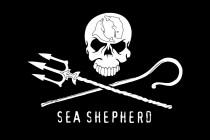 La Danimarca ordina il sequestro del gommone della Sam Simon