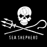 Evento imperdibile con i volontari di bordo italiani di Sea Shepherd Conservation Society