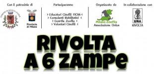 RIVOLTA A 6 ZAMPE con Associazione Milano Zoofila Onlus
