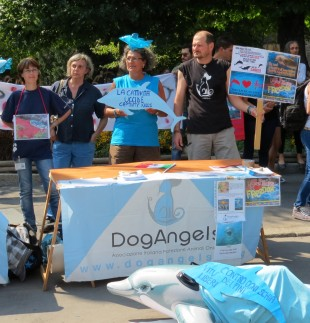 Japan Dolphin Day a Milano