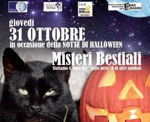 La notte di Halloween arriva; MISTERI BESTIALI