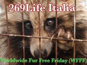 29 Novembre – Worldwide Fur Free Friday;  Evento Internazionale contro le Pellicce