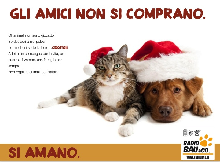 Risultati immagini per non regalare animali a natale