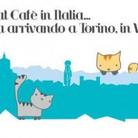Miagola Caffe'; il primo bar che Miagola nasce a Torino.