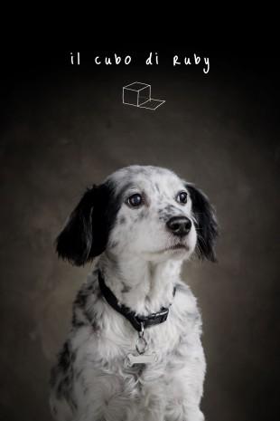 Il Cubo di Ruby a Radiobau!
