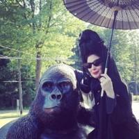 Madame Diane Pernet ed il gorilla morto 80 anni fa'…