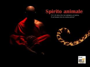 SPIRITO ANIMALE … e se fossero loro la nostra anima