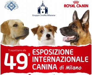 49° Esposizione Internazionale Canina alla Fiera di Milano – Rho
