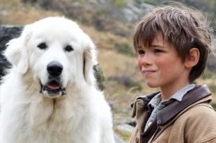 BELLE & SEBASTIEN; una storia che fa' bene ai nostri cuori ed ai cani abbandonati