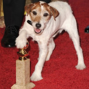 Uggie ed il Golden Globe