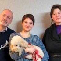 FISIO4VET – vivere con un cane disabile
