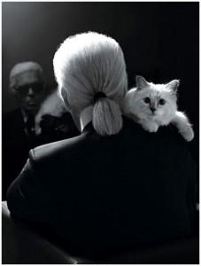 Choupette una gatta… tanti uomini!