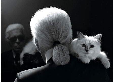 Addio a Karl Lagerfeld