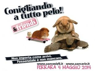 4 Maggio a Ferrara ritornaaaaaaaaaaaa Conigliando a tutto Pelo!!!