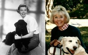 Addio alla fidanzata d'America; Doris Day