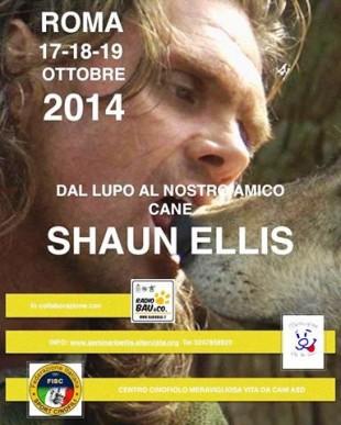 Shaun Ellis, l'uomo Lupo a Roma