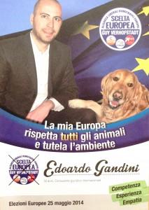 Edoardo Gandini: La mia Europa rispetta TUTTI
