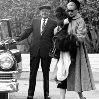 Grace e Oliver…ed il Weimaraner