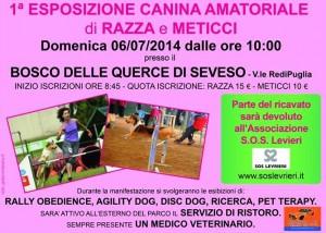 1° Esposizione Canina Amatoriale di cani di razza e meticci a Seveso