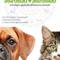 AstroBau AstroMiao