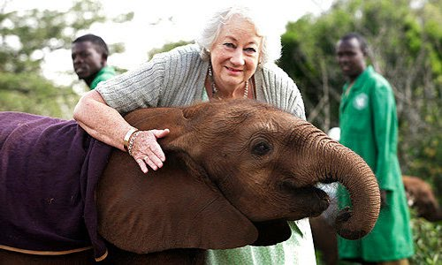Happy BDay to… Dame Daphne Sheldrick Marjorie