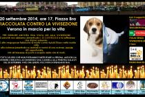 SABATO 20 SETTEMBRE 2014 A VERONA CONTRO LA VIVISEZIONE