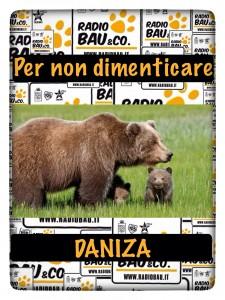 Non 8 Milioni ma 109.000 euro per la Provincia di Trento… fanno la differenza sulla vita di Daniza???