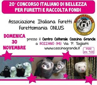 20° Concorso Italiano di Bellezza per Furetti…UN OCCASIONE