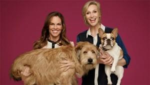 """""""FOX'S CAUSE FOR PAWS"""" porta a casa un cane il Giorno del Ringranziamento!"""