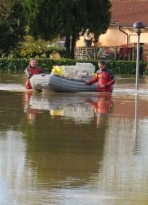 mondo gatto alluvione 2