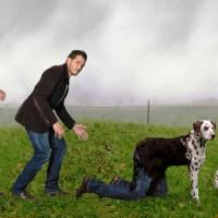 MAIL BOMBING CONTRO IL COLPO DI SPUGNA sui DIRITTI ANIMALI